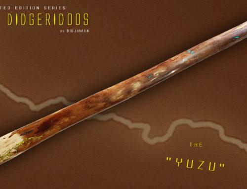"""Didgeridoo Tesla """"YUZU"""""""